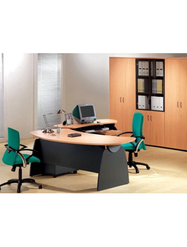 TA Biz Executive Desk
