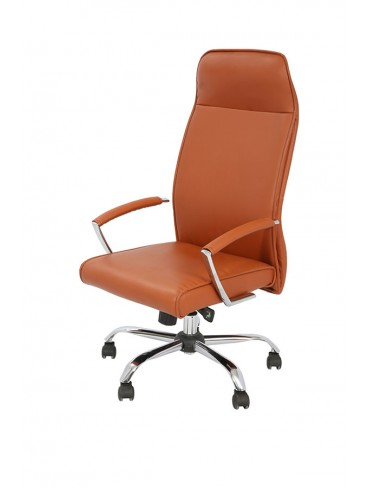 Dolphin Executive Chair
