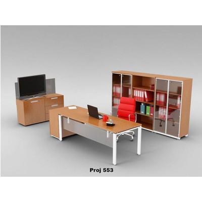 Executive Desk Project 553