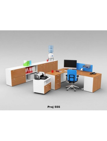 Executive Desk Project 555