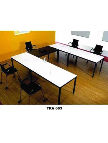 TRA 663 Seminar Table
