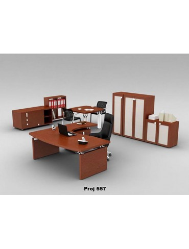 Executive Desk Project 557