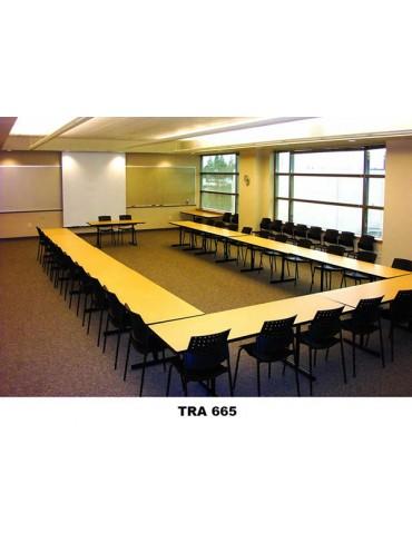 TRA 665 Seminar Table