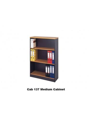 Medium Cabinet 137