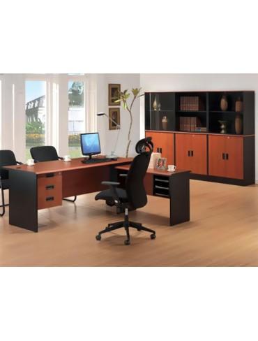 TA Mex Executive Desk