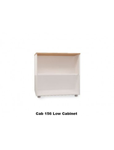 Low Cabinet 156