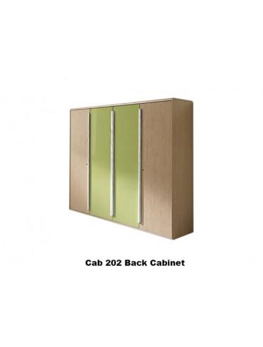 Back Cabinet 202